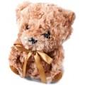 Игрушка-повторюшка ''Медвежонок Тедди'' (бежевый)